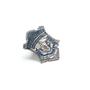 MSP Badge Pin